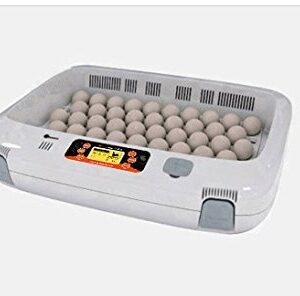 R-com Rcom Px 50 PRO 50 Fully Automatic Digital Egg Incubator