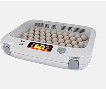 R-com Rcom Px 50 PRO 50 Fully Automatic Digital Egg Incubator